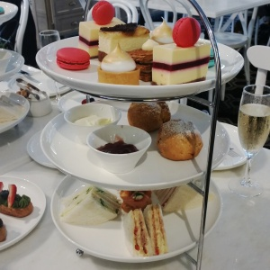 Duchess High Tea | Passiontree Velvet
